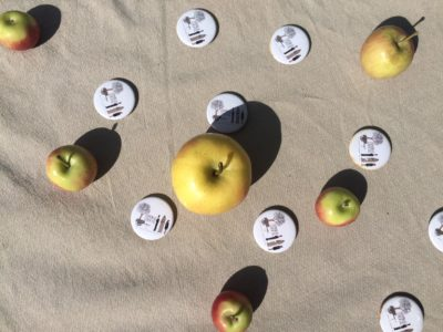 apples on table photo
