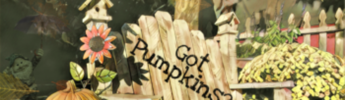 Got Pumpkins? 7 Places to Pick Your Perfect Calabasa in SLO