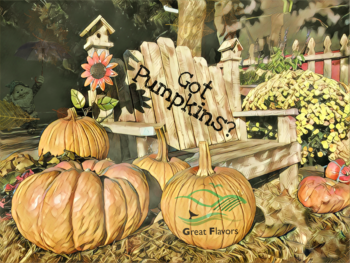 pumpkins and bench image